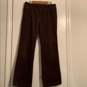 Chocolate brown Eddie Bauer bootcut corduroys 12T